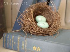 nest ~~ from Vintage 541
