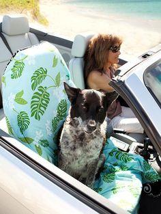 Large Blue Barking Dog Car Seat Blanket  by BarkingDogBlanket, $62.00