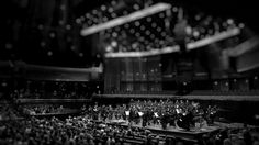 ON THE CULTURAL SPECIFICITY OF SYMPHONY ORCHESTRAS What is the role of white-led arts institutions in a race-conscious world?
