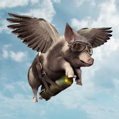 """And always you said: """"Only when the pigs can fly""""; be careful some word come true...specially with Photoshop...(Elcodigodebarras)"""