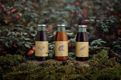 Nordic Berry on Packaging of the World - Creative Package Design Gallery