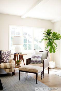 living room + reading corner + cozy nook + fiddle fig leaf tree + interior design