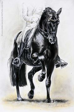 Dressage by AtelierArends.deviantart.com on @DeviantArt