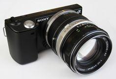 My Sony Nex5  with Minolta adapter