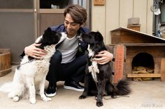 オートレーサー 森 且行 | Katsuyuki Mori Takuya Kimura, Dogs, Animals, Animales, Animaux, Pet Dogs, Doggies, Animal, Animais