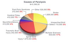 Image pie chart showing the different causes of paralysis. Back Pain Symptoms, Spinal Cord Injury, Traumatic Brain Injury, Cerebral Palsy, Multiple Sclerosis, Pie, Chart, Image, Torte