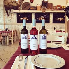 Travolta® | House Wine — The Dieline - Branding & Packaging Design