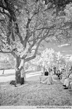 La Tria 2012 - Destination wedding photographer - Getting married in Barcellona Spain