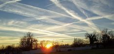 There are a number of health supplements that can help protect you against the harmful effects of geoengineering particulate (chemtrails) on the body and brain.