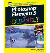 Author: Barbara Obermeier, Ted Padova  Publisher : For Dummies