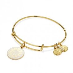 'Zest for Life Charm Bangle - Front