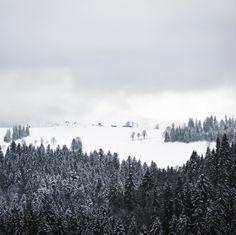 Swiss Winter  Who can spot the tiny little paraglidera ?  #winter #switzerland #schallenberg #snow #forest #paraglider #500px