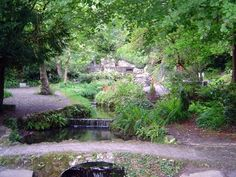 Sligo, Ireland The holy well..grew up beside here, took my kids here lots, my place of utter peace..miss it