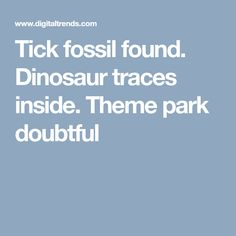 Tick fossil found. Dinosaur traces inside. Theme park doubtful