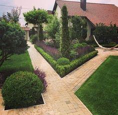 Одноклассники Front Path, Topiary, Paths, Sidewalk, Exterior, D1, Gardening, Garden, Lawn And Garden