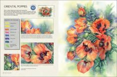 flowers-in-watercolour-by-wendy-tait-05 Watercolor Books, Kids Watercolor, Watercolor Mixing, Watercolor Disney, Watercolor Cards, Watercolor Flowers, Watercolor Painting, Beautiful Paintings Of Flowers, Poppy Drawing