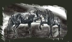 Wild Horses drawing