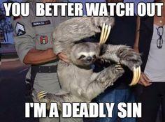 Beware Of Sloths