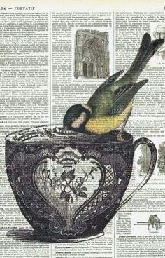 Bird on a Teacup Repurposed antique book pages with vintage illustrations. Book Page Art, Book Pages, Vintage Bird Illustration, Vintage Illustrations, Vintage Birds, Vintage Yellow, Vintage Paper, Vintage Flowers, Newspaper Art