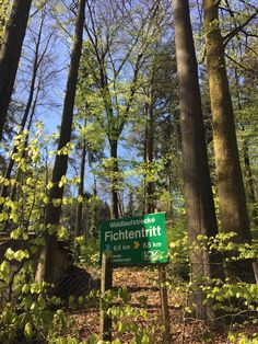 a beautiful forest running courses in Zurich #zurich #running #activitybean #finnenbahn #outdoorsports #forest #joggen #wald #uetliberg Switzerland, Tourism, Beans, Activities, Inspiration, Beautiful, Forests, Turismo, Biblical Inspiration