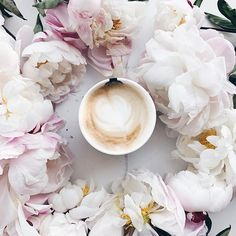 Peonies and coffee - instant mood lifter. If only I had some today, they're much needed.