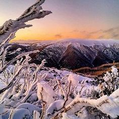 Falls Creek, Victoria | 19 Amazing Places In Australia That Are Perfect To Visit In Winter