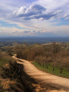 The road between Alba and Mango, Piemonte Italy http://www.winepassitaly.it/index.php/en/travel-wineries-piedmont/maps-and-wine-zones/asti-and-moscato