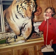 The Tiger Who Came to Tea talk/writing prompt. #talkprompt #writingprompt #ks1…