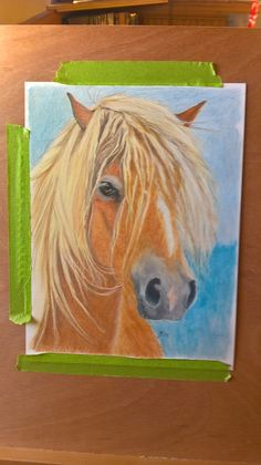 ginger pony cp with prismascolour, derwent colorsoft and polychromos