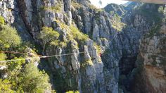 Perfect Africa and the Cape Canopy Tour in Elgin Nature Reserve, Cape Town, Canopy, Holland, Westerns, Africa, Tours, Mountains, City