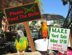 11 Best Fundraiser Events for M A R S  images in 2014   Fundraising