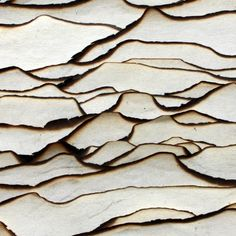 burnt edges of layered paper create an abstract landscape