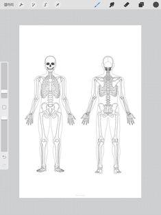 Nursing, Study, Printables, Stickers, Human Body, Studio, Print Templates, Studying, Research