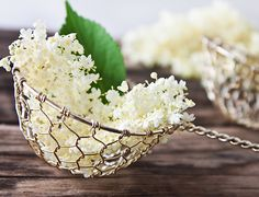 Syrup, juice, tea, honey, soup and fried blackberry blossoms Superfood, Queen Annes Lace, Big Meals, Elderflower, Food Trends, Korn, Decorative Bowls, Food And Drink, Herbs