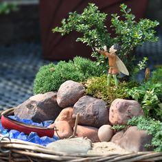 On The Rocks - Miniature Fairy Garden