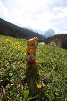 Le lapin de Pâques en Bavière