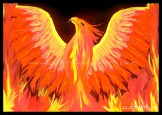 °Flame Phoenix by FleetingEmber