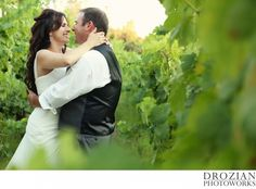 Romantic vineyard wedding.  The vines were so green and full!