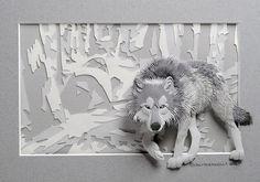Calvin Nicholls - wolf