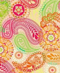 Paisley Collection By Jugni's Jania