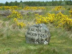 Culloden Battlefield: one of the graves