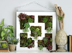 I want to add greenery to my bedroom with…