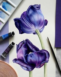 Color Pencil Drawing Clay Jensen (Dylan Minnette) - 13 Reasons Why Colored Pencil Artwork, Pencil Art Drawings, Colored Pencils, Tulip Painting, Painting & Drawing, Watercolor Artwork, Watercolor Flowers, Watercolor Pencil Art, Drawing Flowers