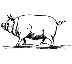 From the 1894 Laughable Lyrics: A Fourth Book of Nonsense Poems, Songs, Botany, Music, etc. by Edward Lear.