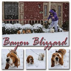 Bayou Blizzard 2015 by mkclinton.coml