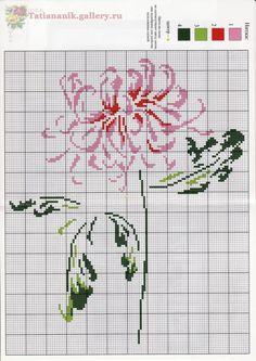 Very pretty chrysanthemum cross stitch