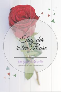 Die Rose ist nicht nur äußerlich wunderschön, sondern sorgt auch für unsere Schönheit und Gesundheit! Die Wirkung der Rosenblätter ist schon seit der Antike bekannt: das in den Blütenblättern enthaltene ätherische Öl wirkt stimmungsaufhellend, anregend, gegen Entzündung der Bronchien, Migräne und Kopfweh, allgemein schmerzlindernd, und ist natürlich auch ein hervorragendes Hautpflegeöl! Ich verwende für meine Ölmischungen auch Rosenöl - in Bio-Qualität. #rose #ätherischeöle Watermelon, Antiquities, Nursing Care, Health, Nice Asses