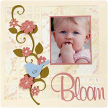 HSN's Craft Projects: Cards, Scrapbook Layouts & More at HSN.com