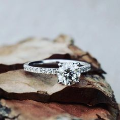 Round brilliant cut diamond set in white gold with small pave diamonds on the band wedding engagement ring Designer Engagement Rings, Wedding Engagement, Diamond Engagement Rings, Wedding Rings, Diamond Jewelry, Gold Jewelry, Wholesale Jewelry, Ring Designs, Jewelry Gifts