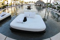 I wouldn't mind lying on this bed in the middle of my pool..